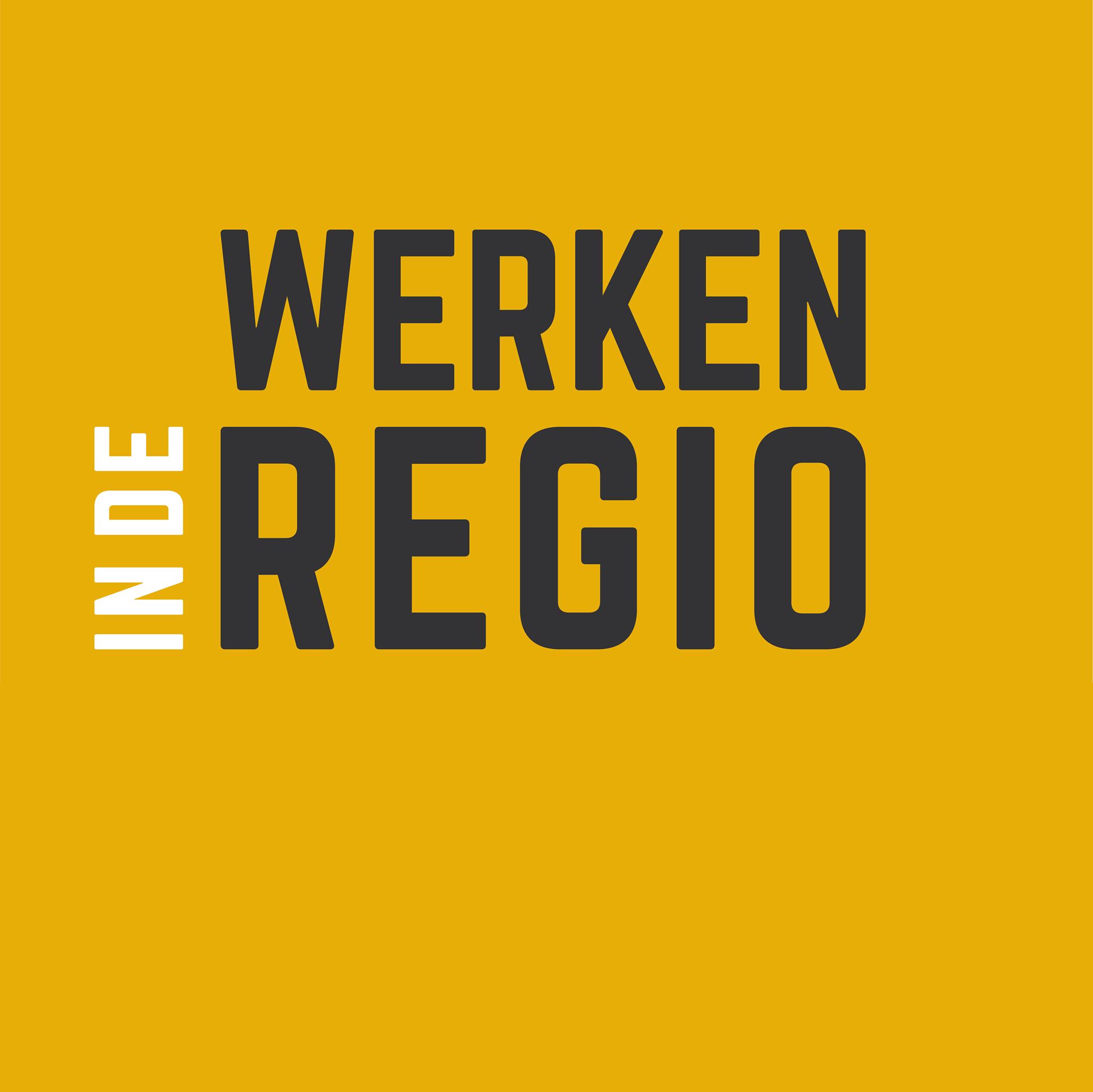 Werken in de Regio   Vacatures in jouw stad of regio   Het Social Media Mannetje